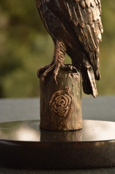 Long-Crested Eagle Exclusive Gift
