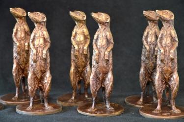 Meerkats as corporate gifts