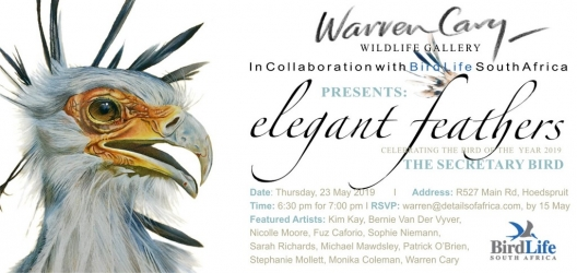 Elegant Feathers - Exhibition of bird art in Hoedspruit