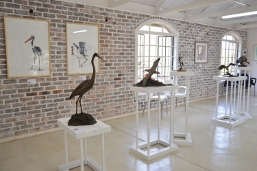 Elegant Feathers exhibition - Hoedspruit