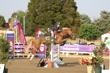 Show pony and Rider Jumping up