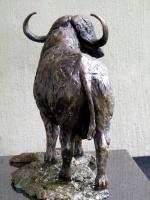 Buffalo Bull