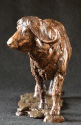 Daggaboy - Buffalo