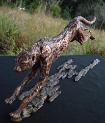 Flight - Cheetah