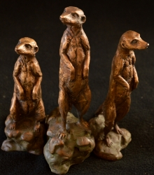 Meerkats - Mini 3