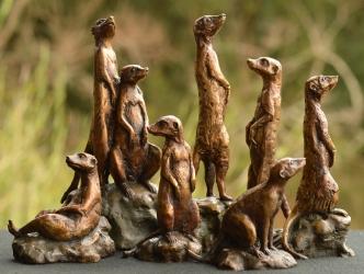 Meerkats - mini 8