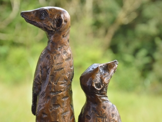 Neighbourhood Family - Meerkats