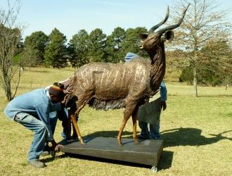 Nyala Bull - Life-size