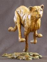 Speed - Running Cheetah
