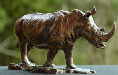White Rhino small - Maquette 2