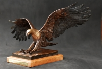 African Fish Eagle - Exclusive edition SOLD