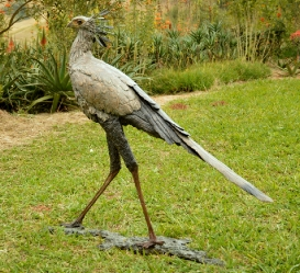 Secretary Bird 2 - Life size