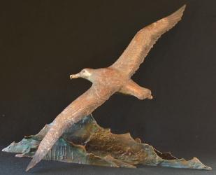 Wandering Albatros - maquette