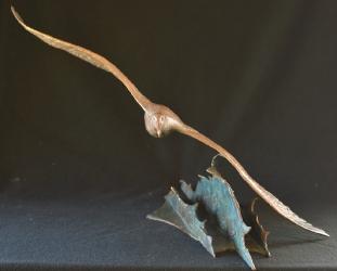Wondering Albatross - maquette