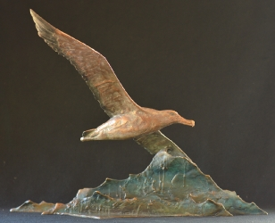 Wondering Albatross