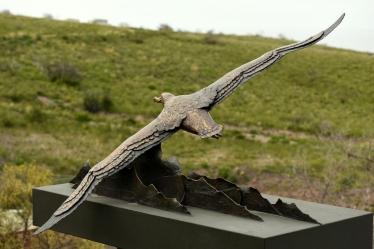 Wondering Albatross - Life-size