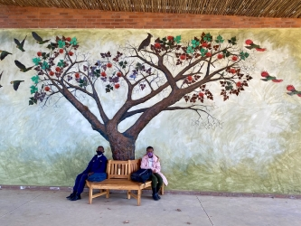 Thembelihle Primary School tree relief mural, Howick
