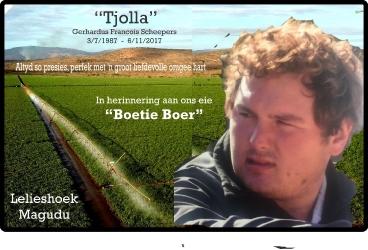 Tjolla