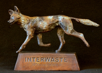 Wild Dog Interwaste 30 year award