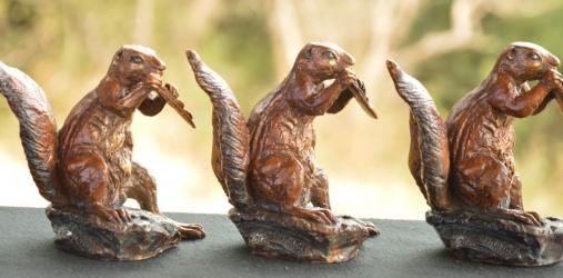 Squirrel Exclusive corporatate gift