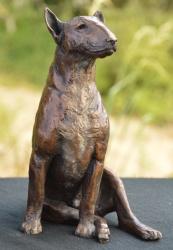 Bull Terrier Edition 9/10