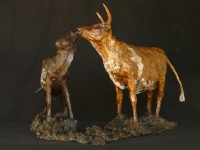 Nguni cow and calf