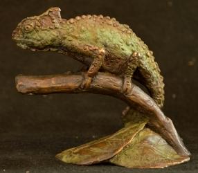 Chameleon- Mini