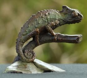 Chameleon - Mini