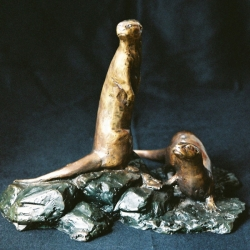 Spotted Necked otters maquette