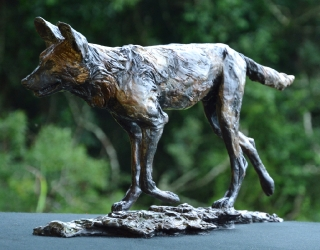 The Runner - Wild Dog