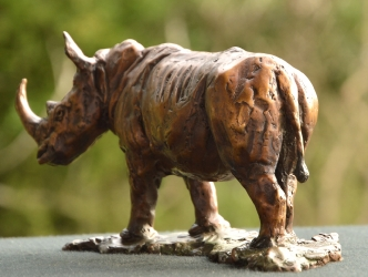White Rhino - Maquette 2