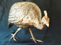 Helmeted Guineafowl - Edition Sold Out