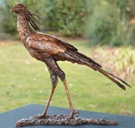 Hunter- Secretary bird
