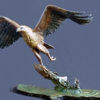 The Catch - Fish Eagle