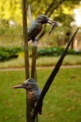 The King Fishers