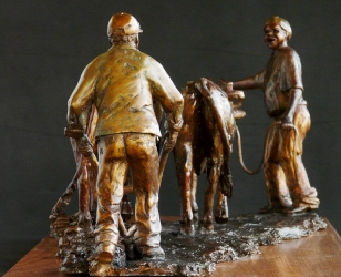 Working together - Ploughing oxen